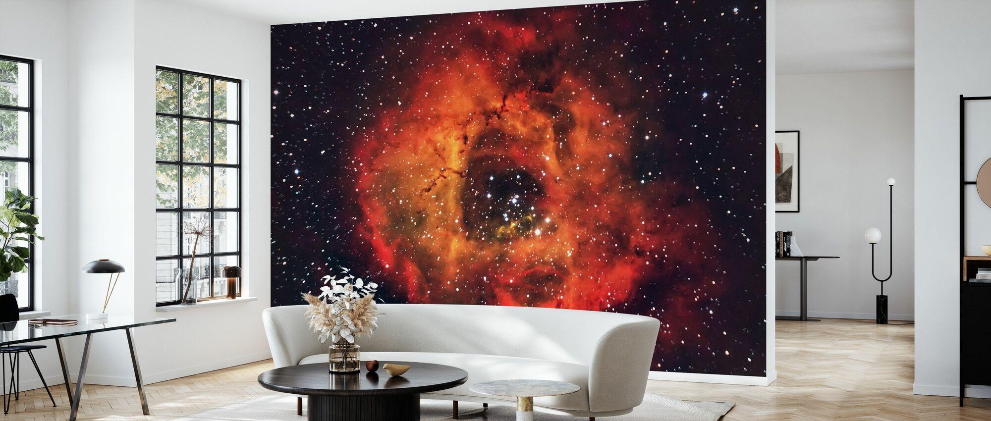 Rose in the Sky - Wallpaper - Living Room