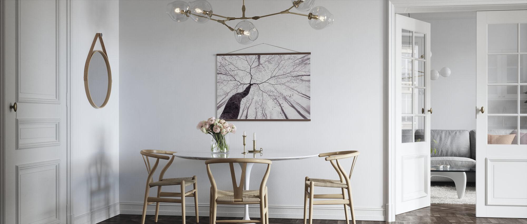 Utsikt over trekronen - Plakat - Kjøkken