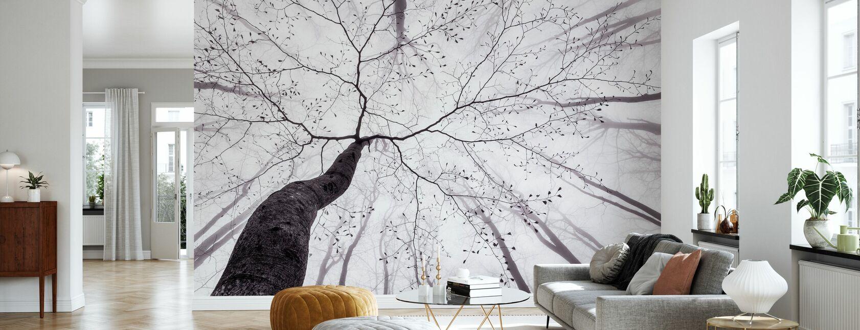 Veduta della corona dell'albero - Carta da parati - Salotto