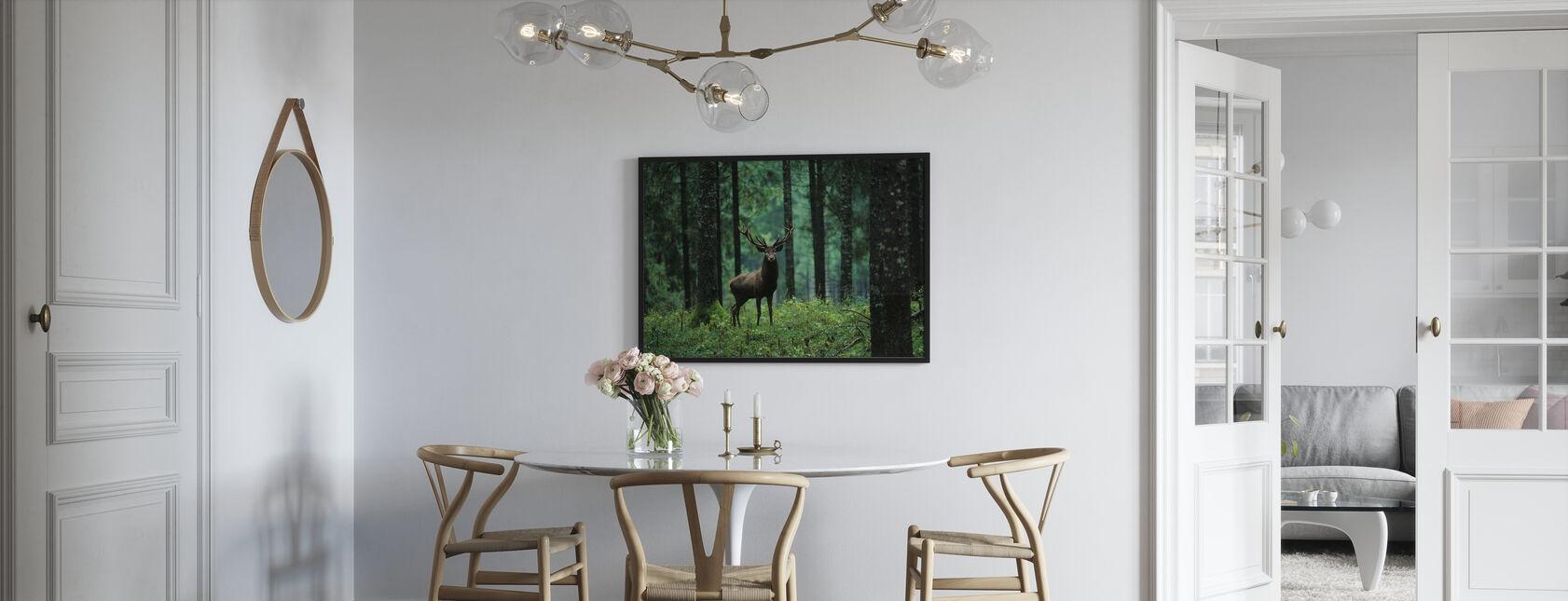 Łosie w lesie - Obraz w ramie - Kuchnia