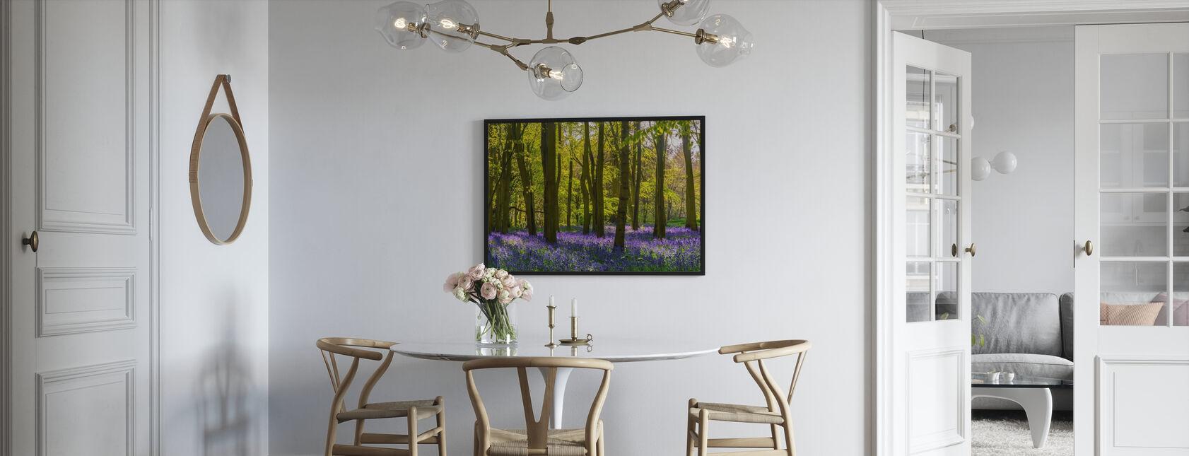 Bluebells Woodland - Poster - Kitchen
