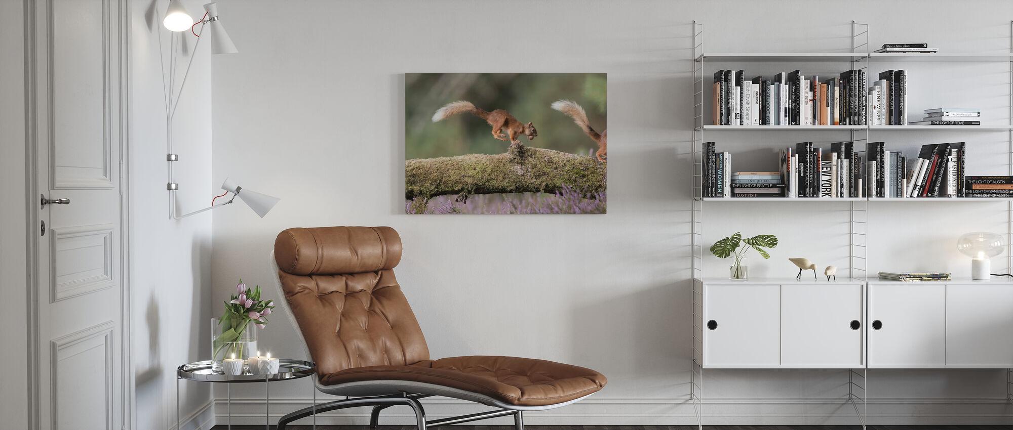 Squirrels Running on Log - Canvas print - Living Room