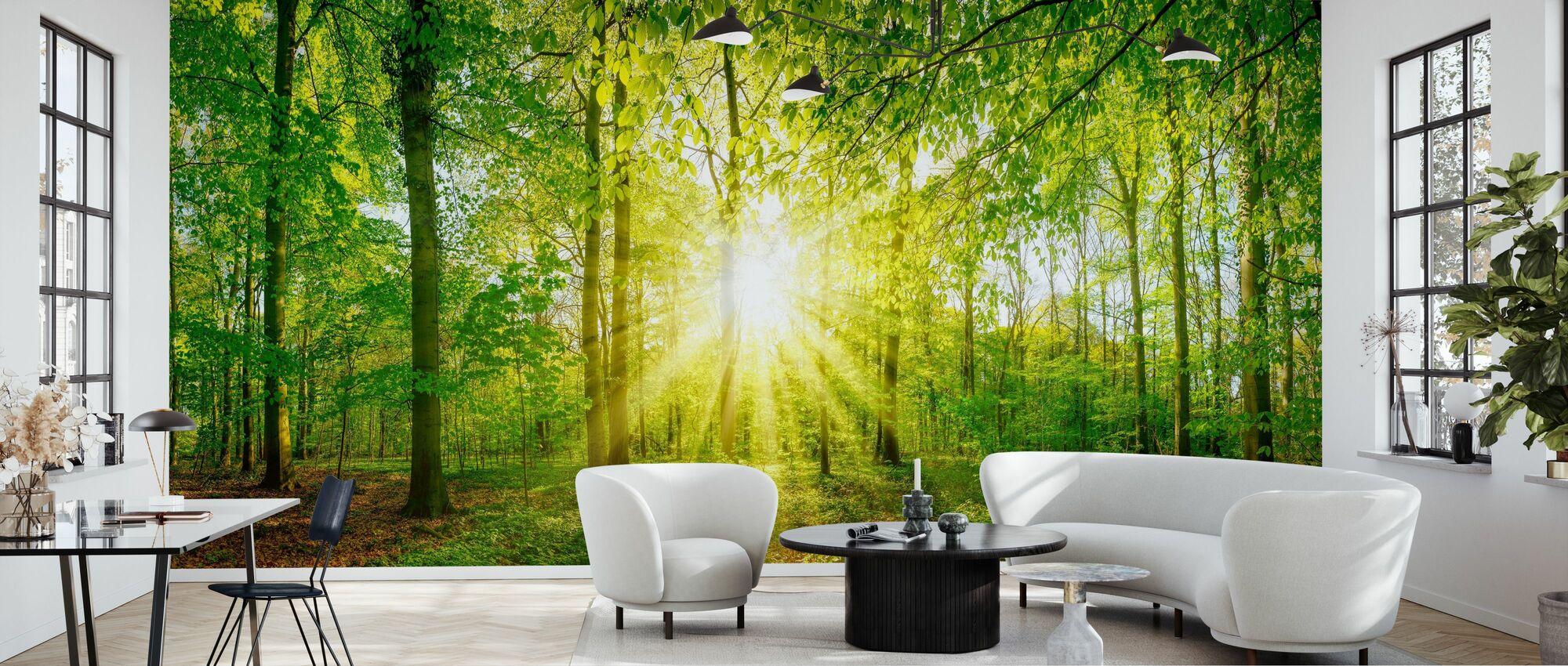 Sollys i skogen - Tapet - Stue