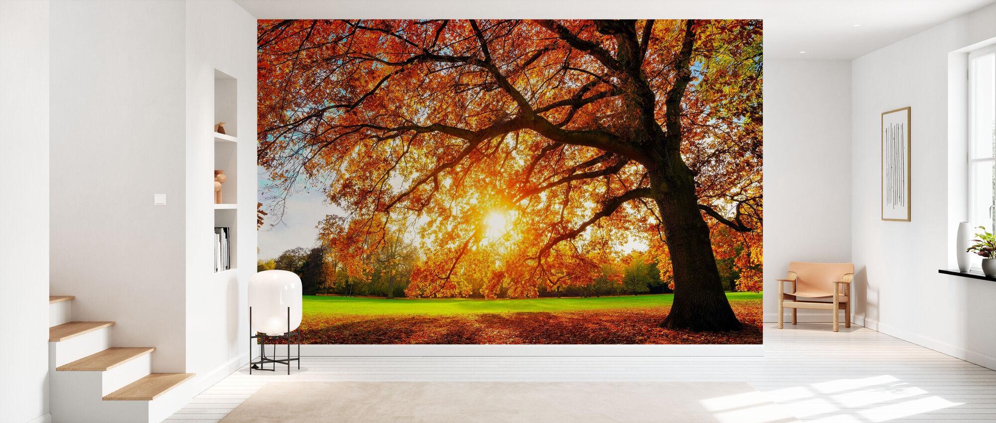 Majestic Oak Tree - Wallpaper - Hallway