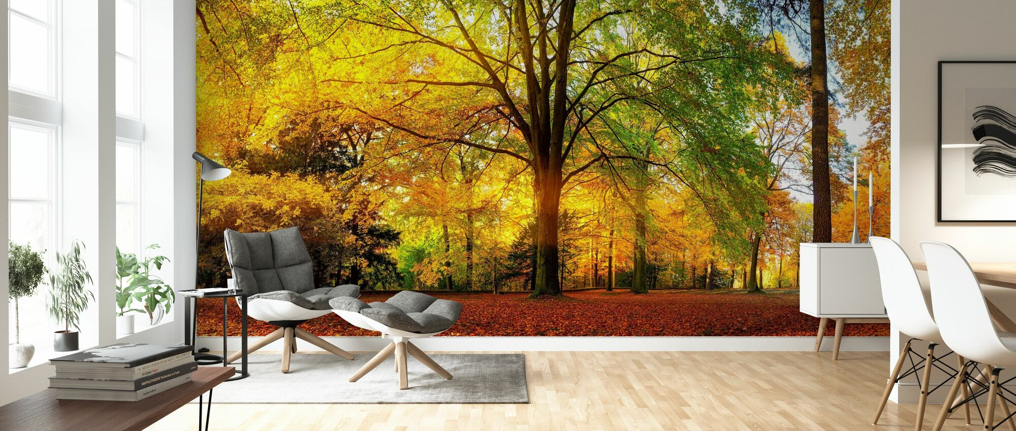 Forest in Autumn - Wallpaper - Living Room