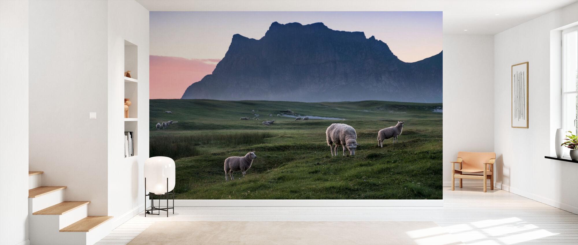 Lamm betesmarker i äng - Tapet - Hall