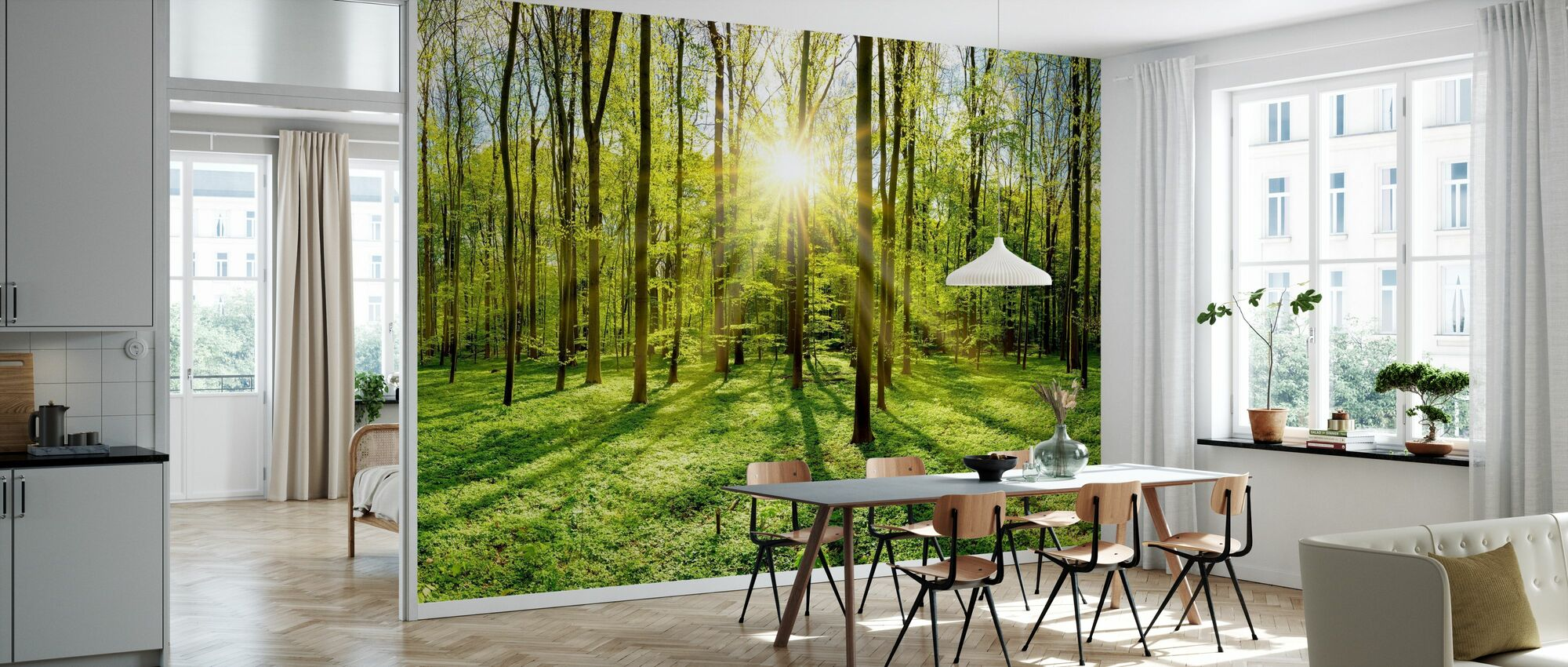Bright Sunshine in the Forest - Wallpaper - Kitchen