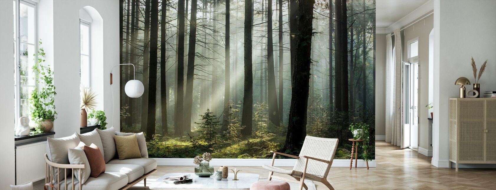 La magie du matin - Papier peint - Salle à manger
