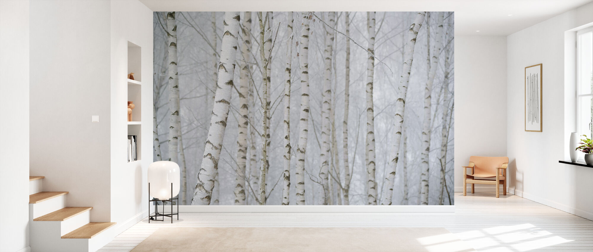 Birch Tree Forest - Wallpaper - Hallway