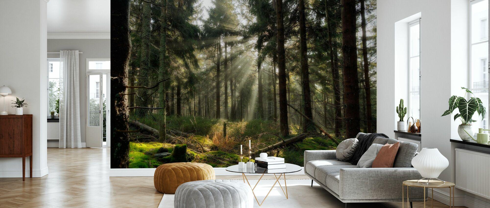 Sunbeam in the Forest - Wallpaper - Living Room