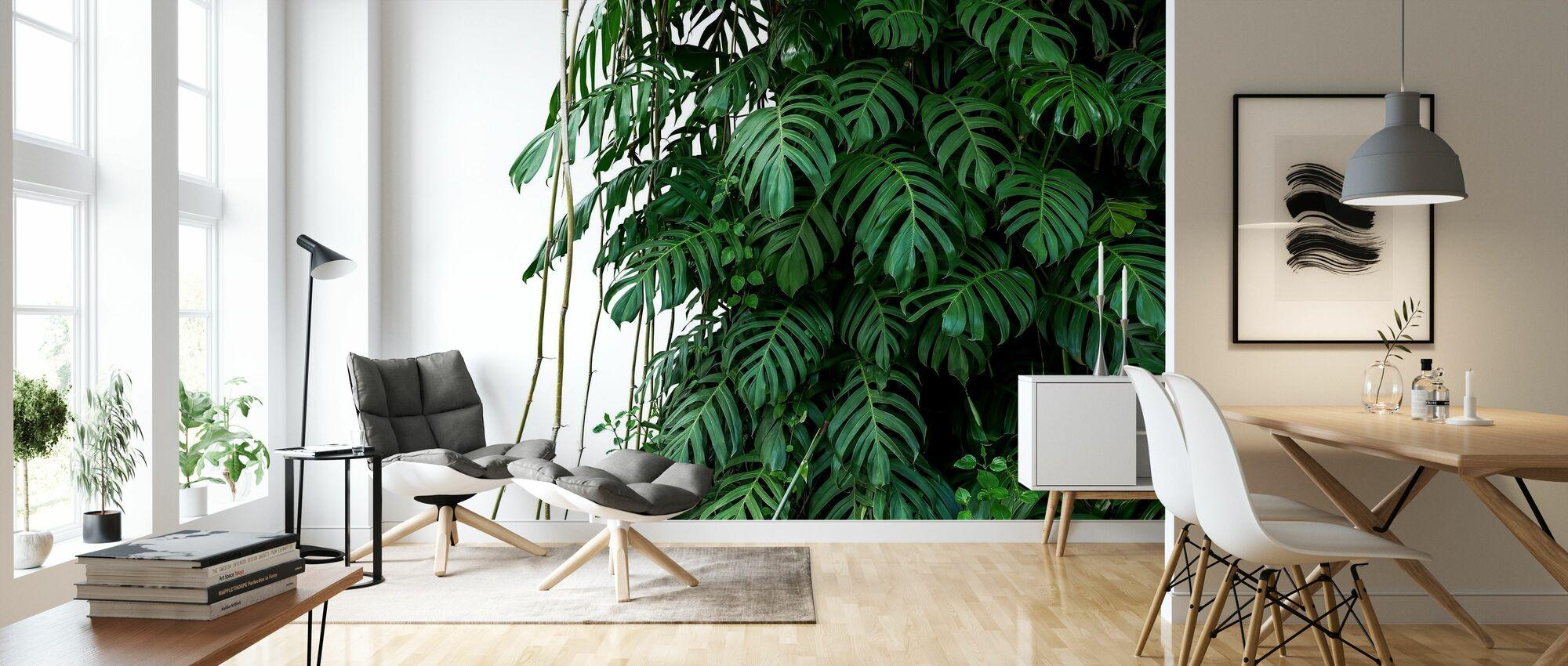 Monstera Tropisk Plante - Tapet - Stue