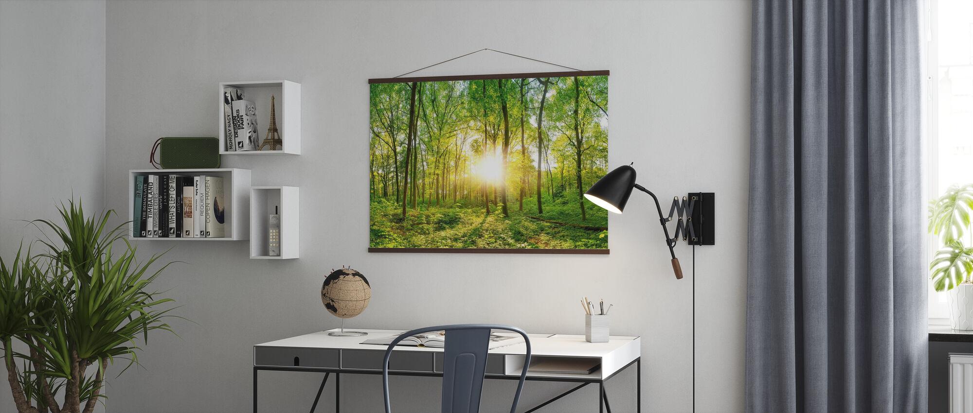 Skov solopgang - Plakat - Kontor