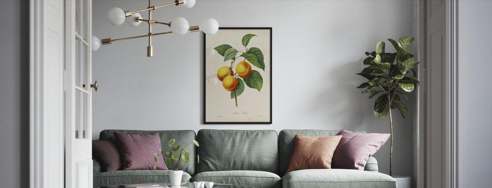 Redoutes Frucht - Gerahmtes bild - Wohnzimmer