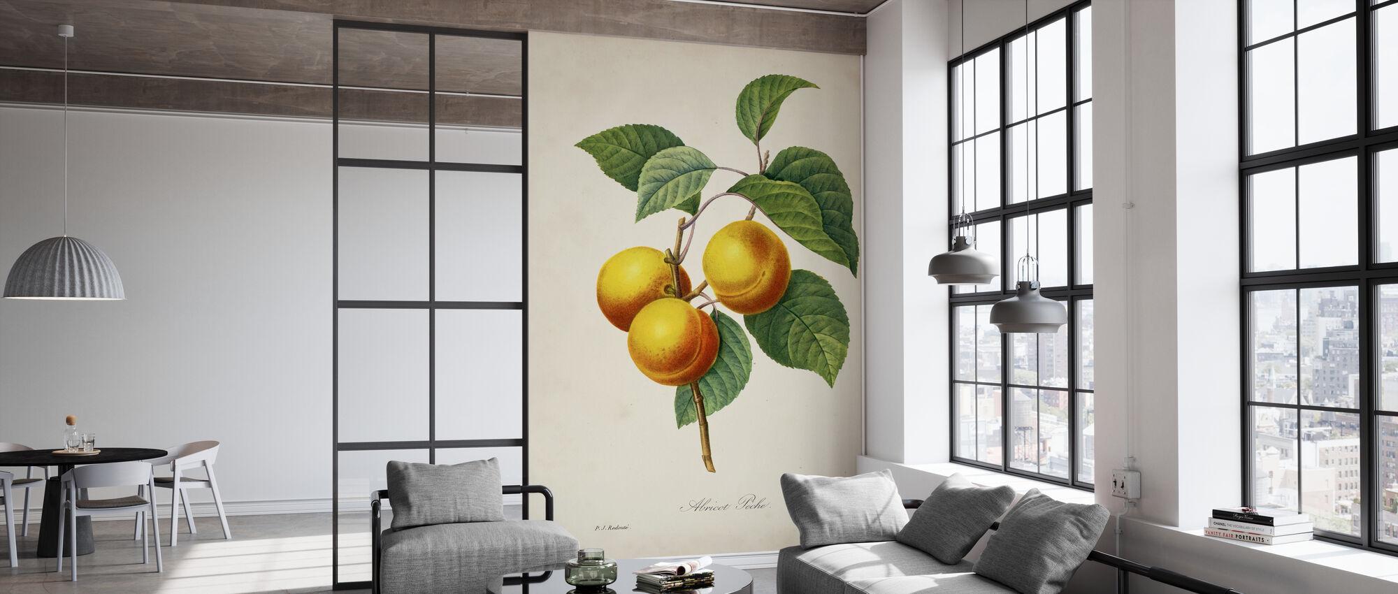 Redoutes Frucht - Tapete - Büro