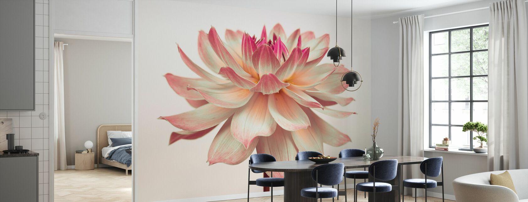 Dahlia Flower - Wallpaper - Kitchen