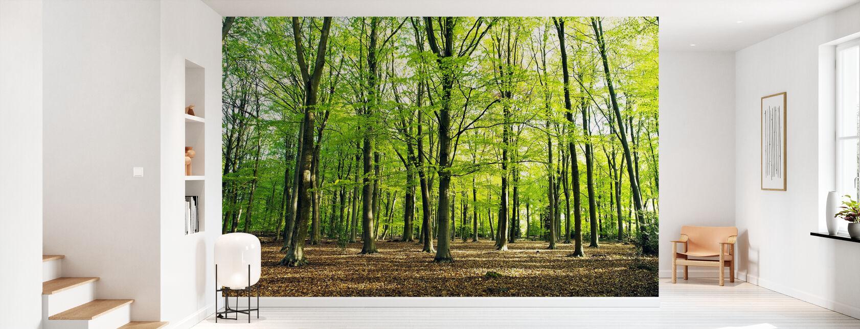 Pleasant Forest - Wallpaper - Hallway