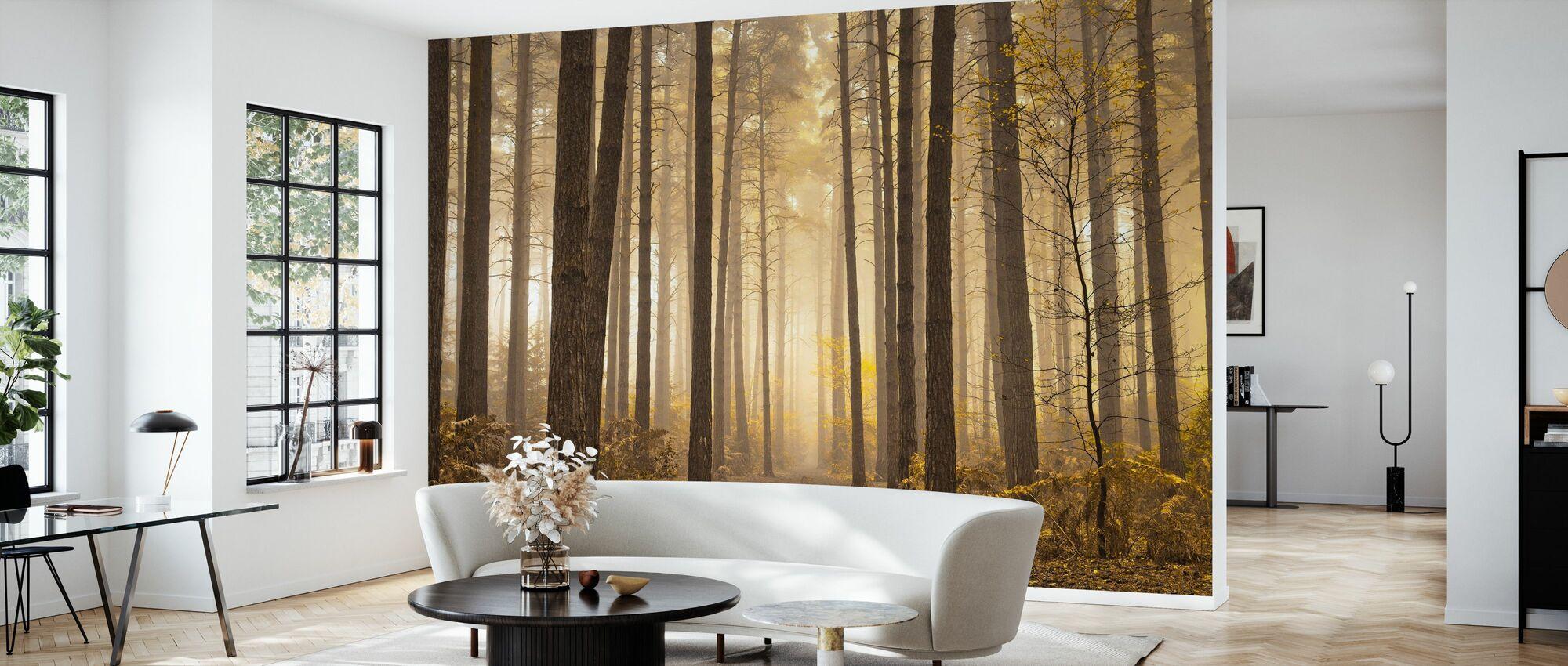 Misty Trees - Wallpaper - Living Room