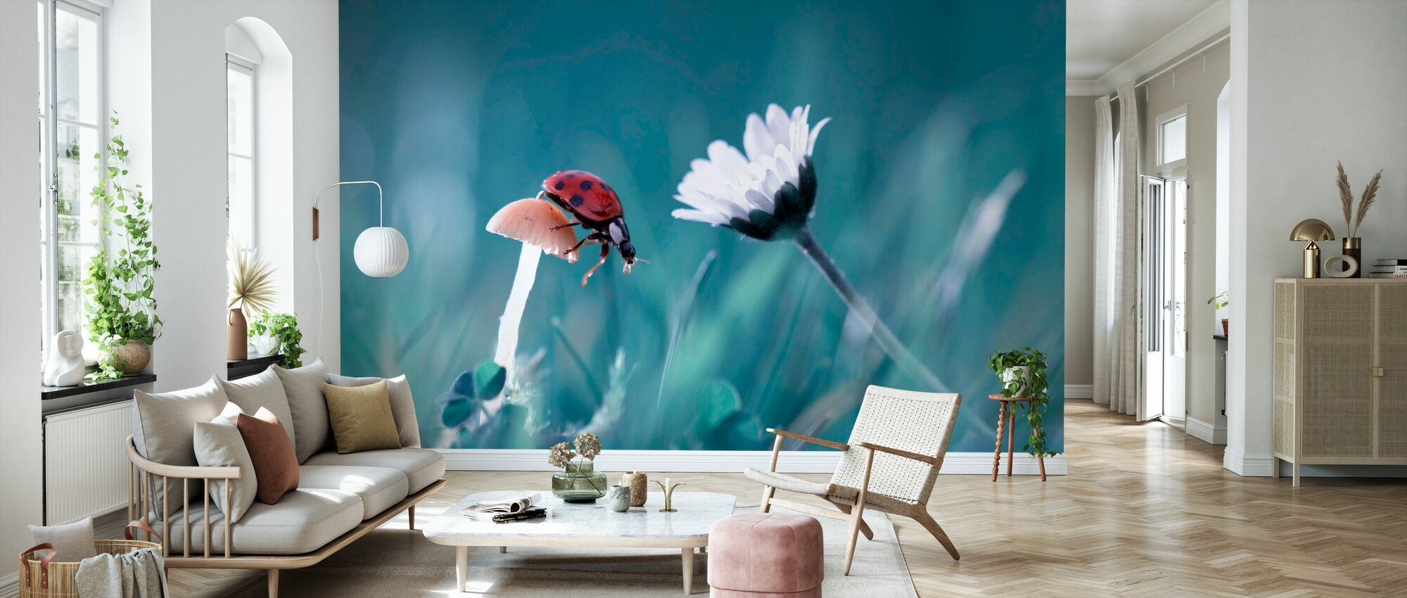 Story of the Lady Bug - Wallpaper - Living Room