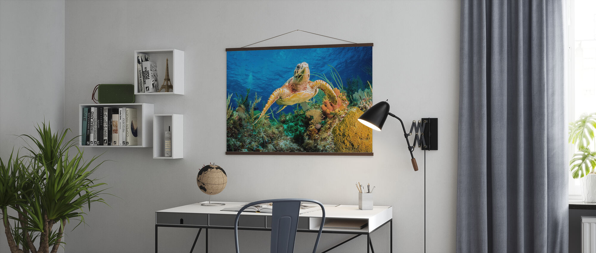 Hawksbill Turtle Swimming - Poster - Office