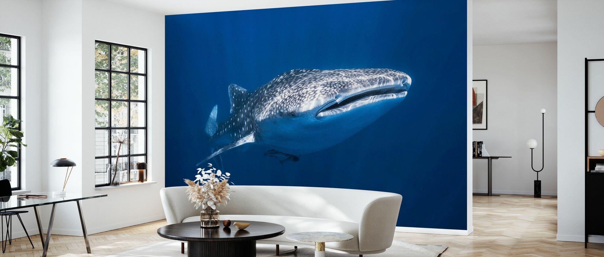 Whale Shark - Wallpaper - Living Room
