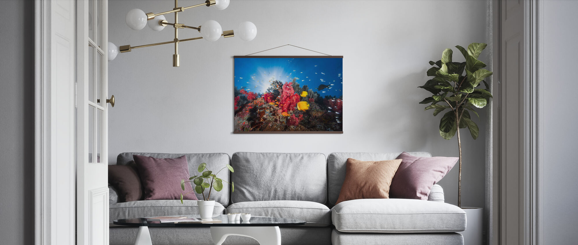 Fish and Coral Reefs - Poster - Living Room