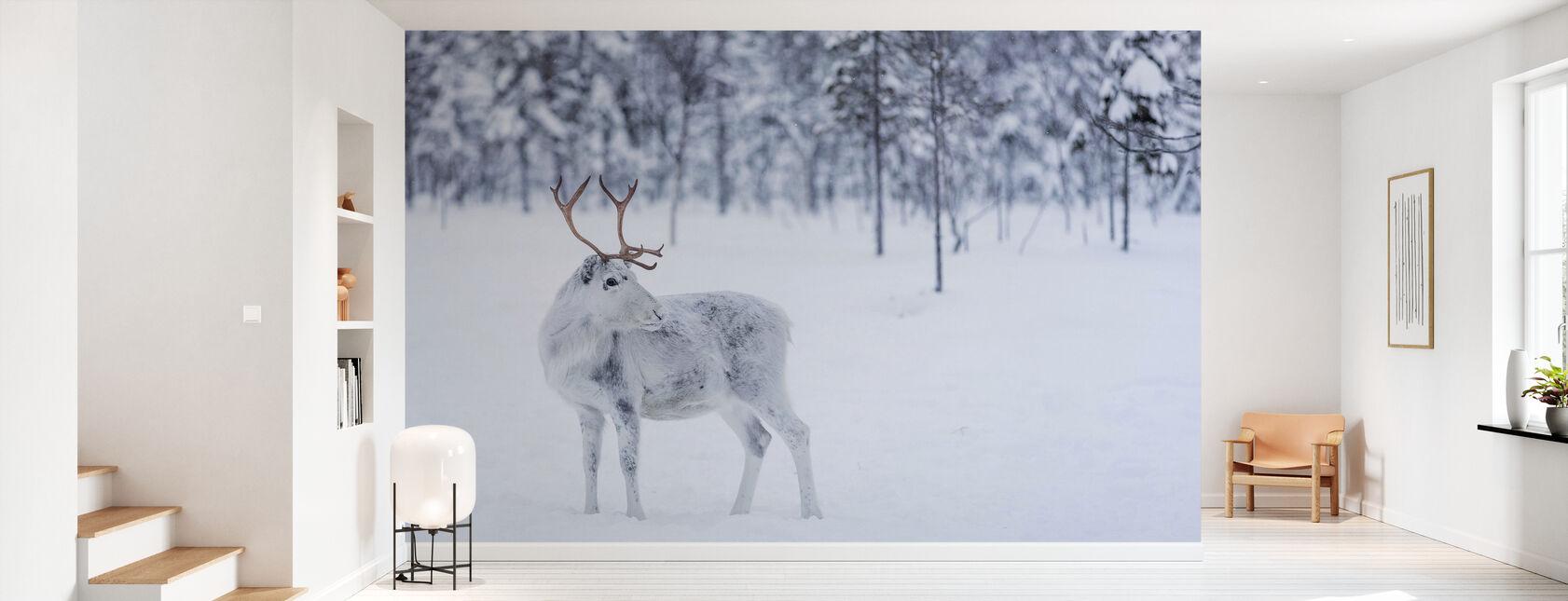 Reindeer II - Wallpaper - Hallway