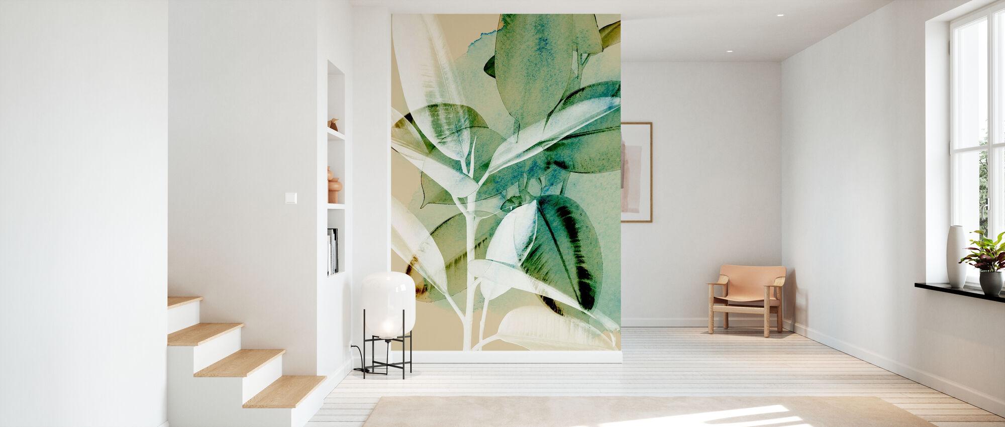 Ficus Elastica - Tapete - Flur