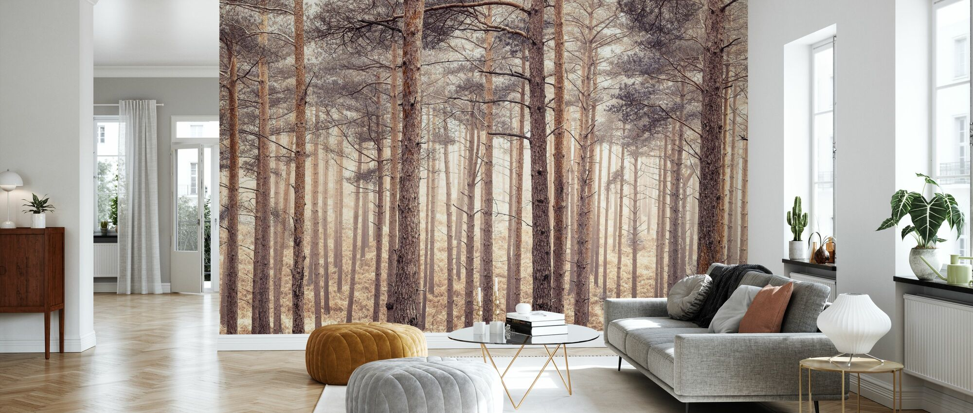 Forest - Wallpaper - Living Room