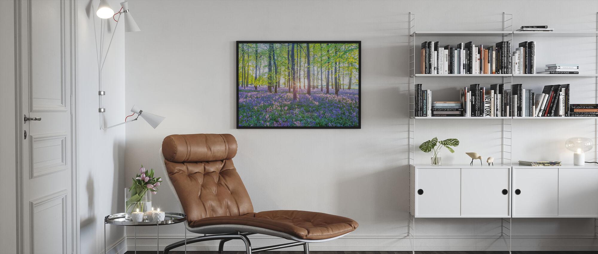 Bluebells - Poster - Living Room