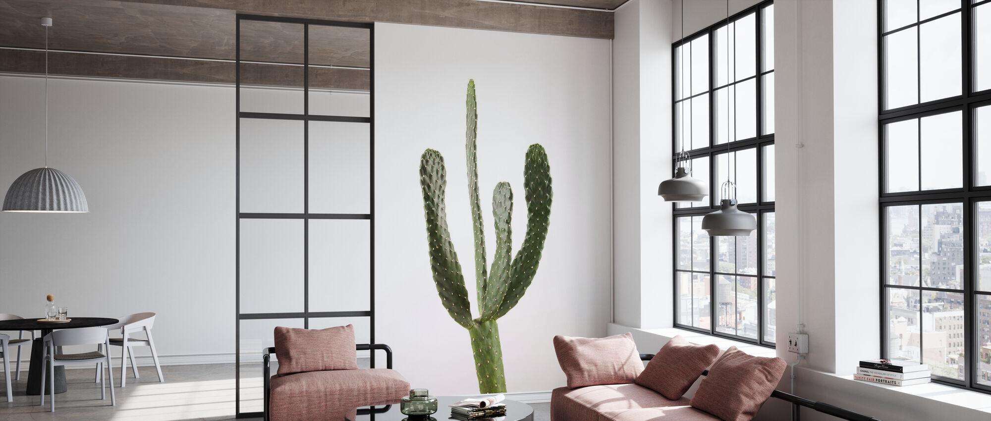 Cacti - White - Wallpaper - Office