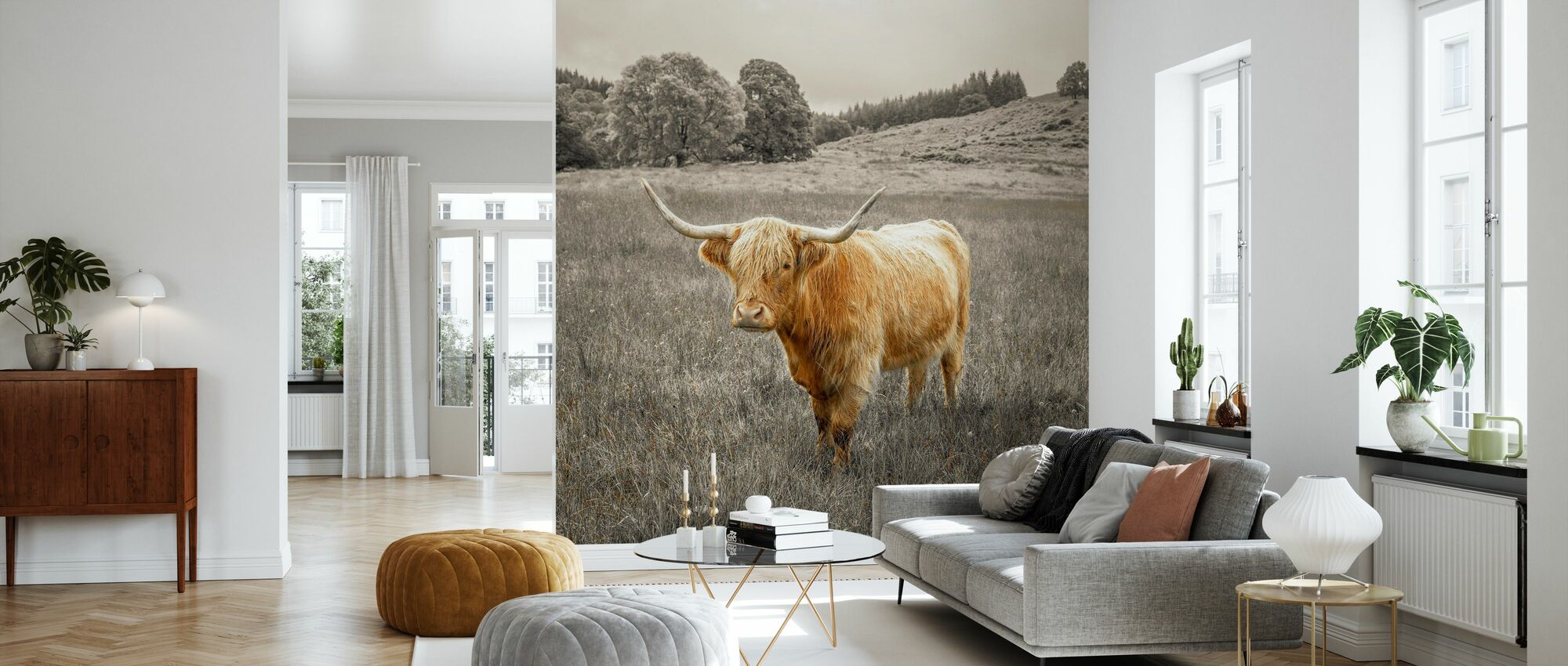 Noble Highland Cow - Wallpaper - Living Room