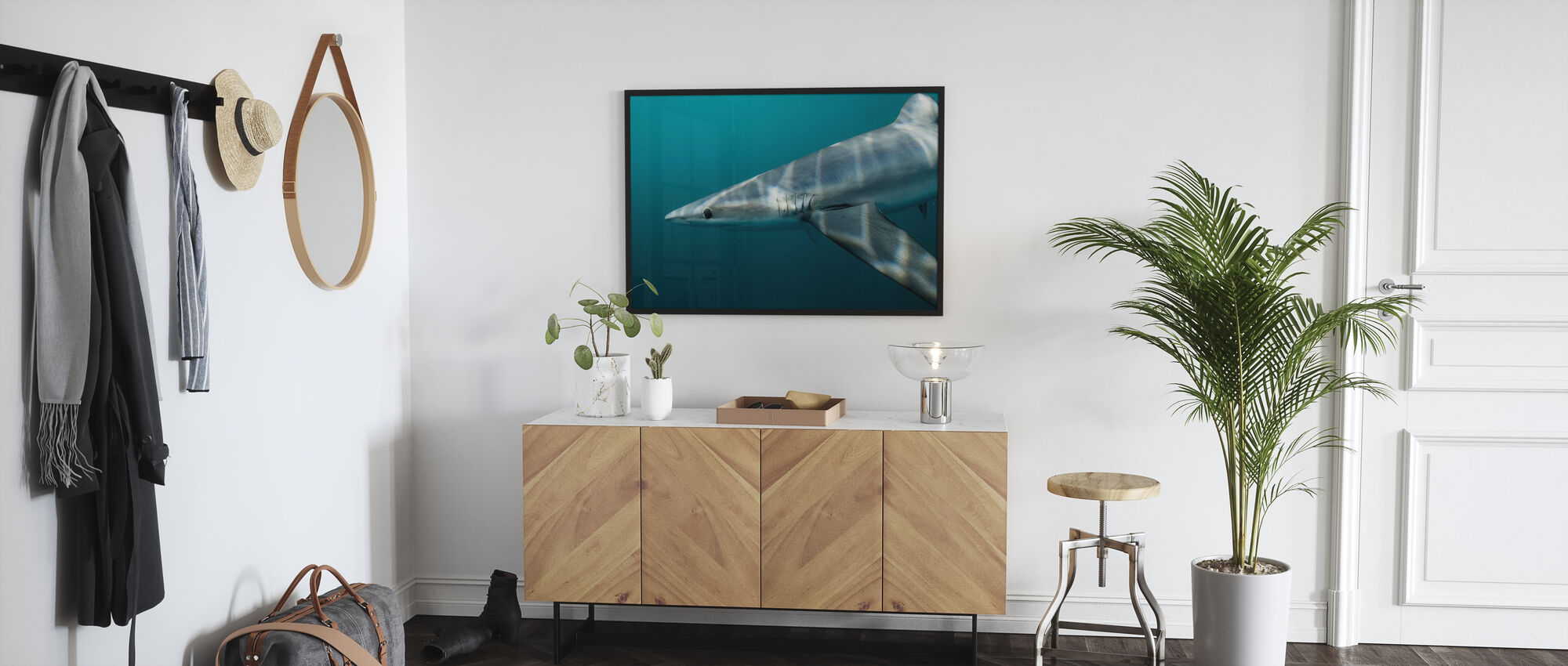 Blue Shark off Halifax - Poster - Hallway