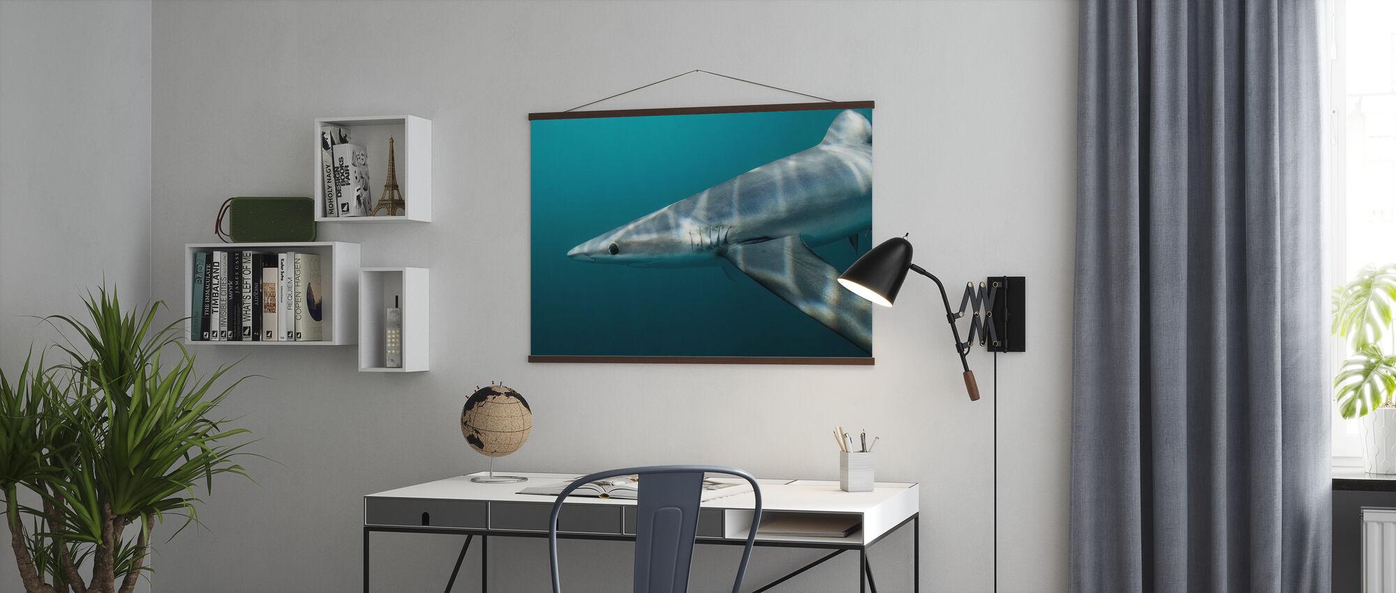 Blue Shark off Halifax - Poster - Office