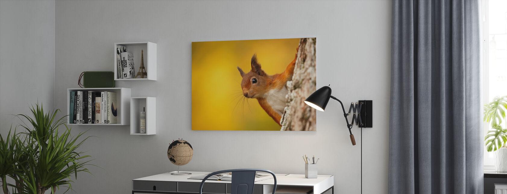 Rødt ekorn med høstfarger - Lerretsbilde - Kontor