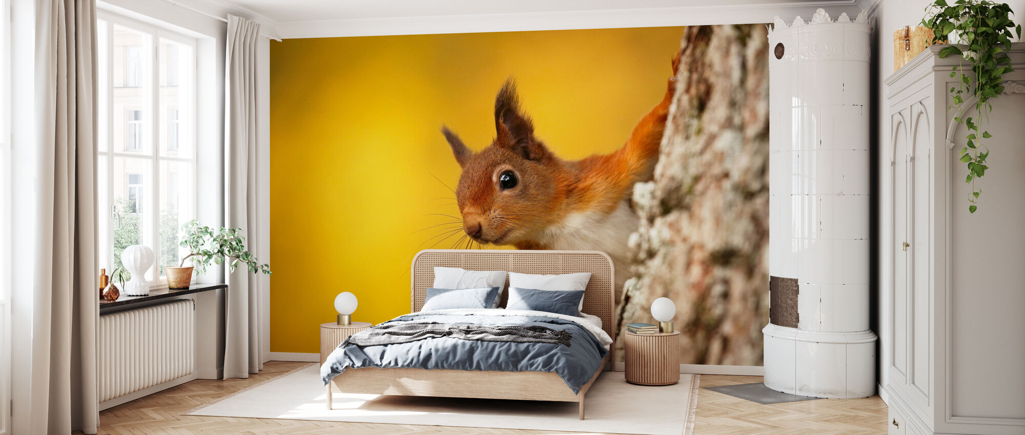 Red Squirrel with Autumn Colors - Wallpaper - Bedroom
