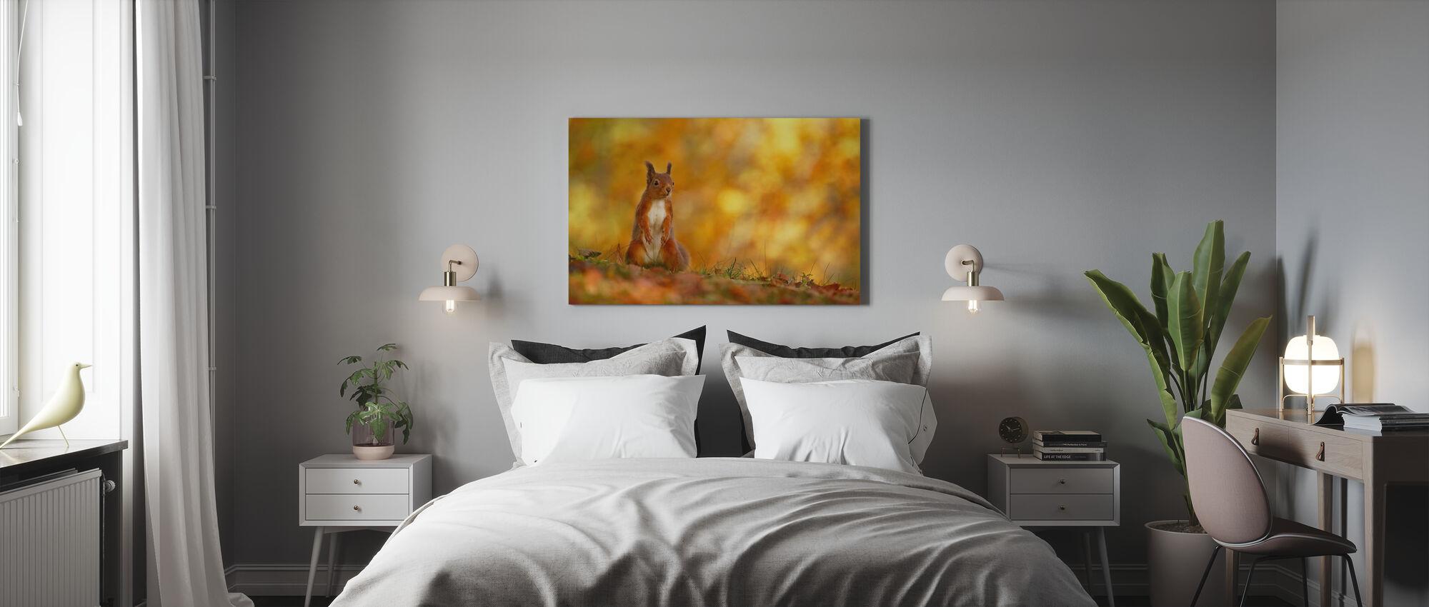 Rødt ekorn på skogbunn - Lerretsbilde - Soverom