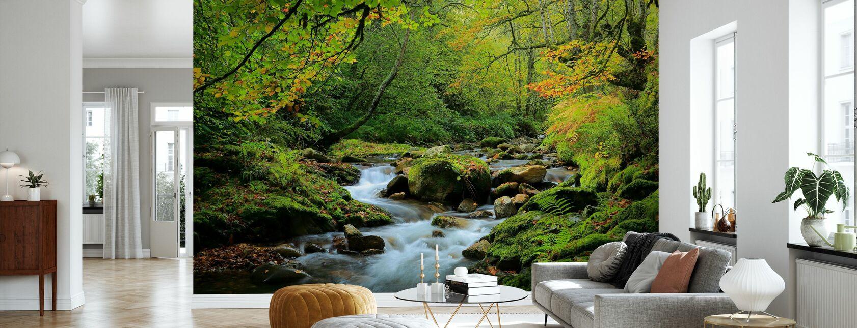 Flod och bokskog - Tapet - Vardagsrum