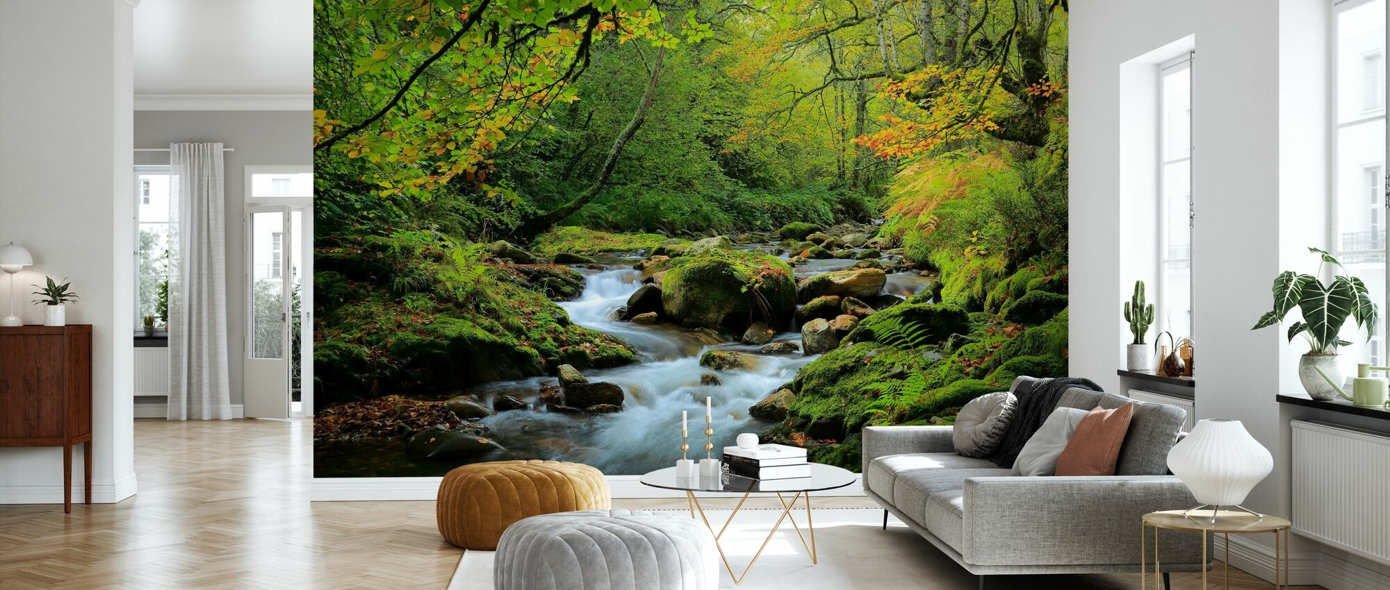River and Beech Woodland - Wallpaper - Living Room