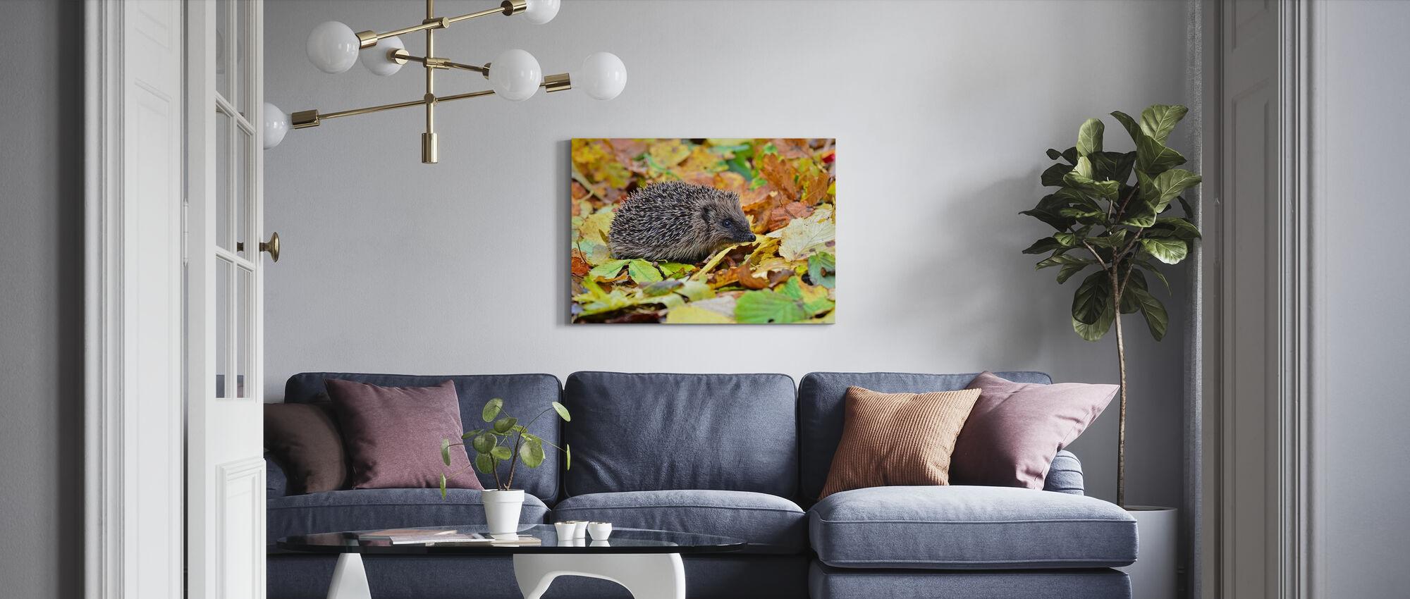 Hedgehog in Autumn Leaves - Canvas print - Living Room