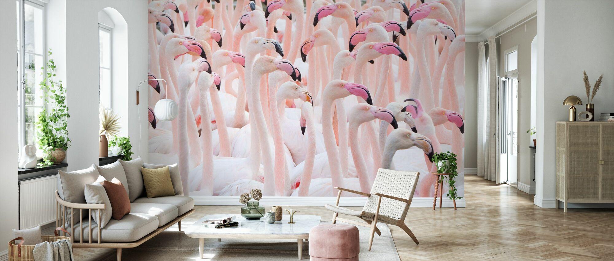 Greater Flamingo Flock - Wallpaper - Living Room