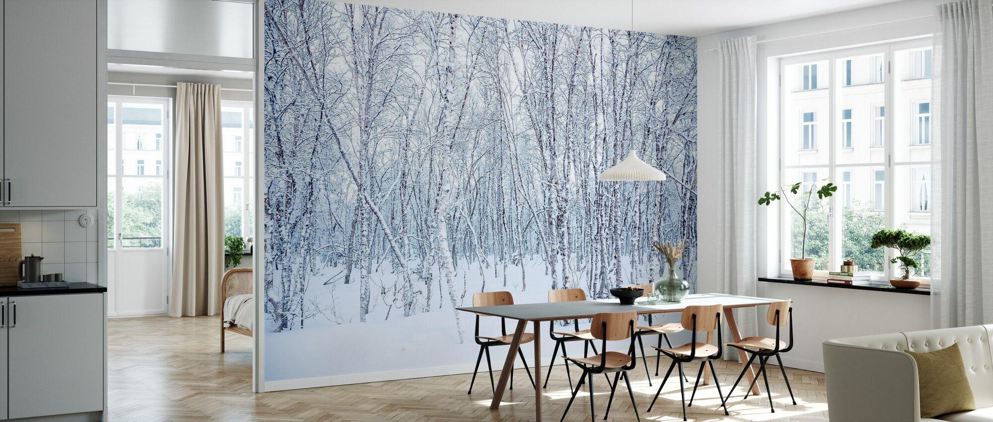 Bjørker i snøen - Tapet - Kjøkken