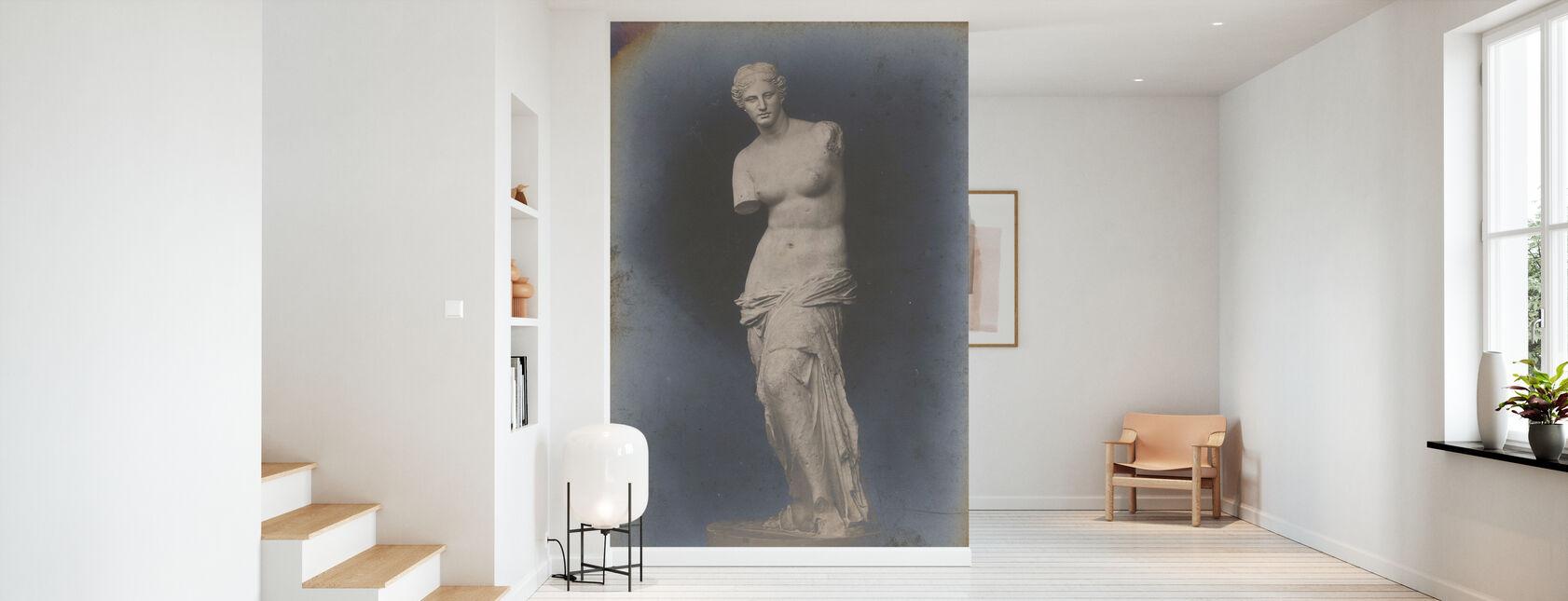 The Venus of Milo - Wallpaper - Hallway