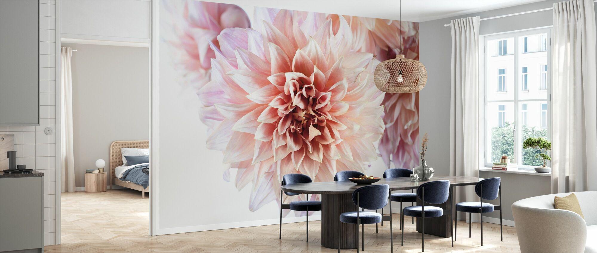 Peach Dahlias Light - Wallpaper - Kitchen