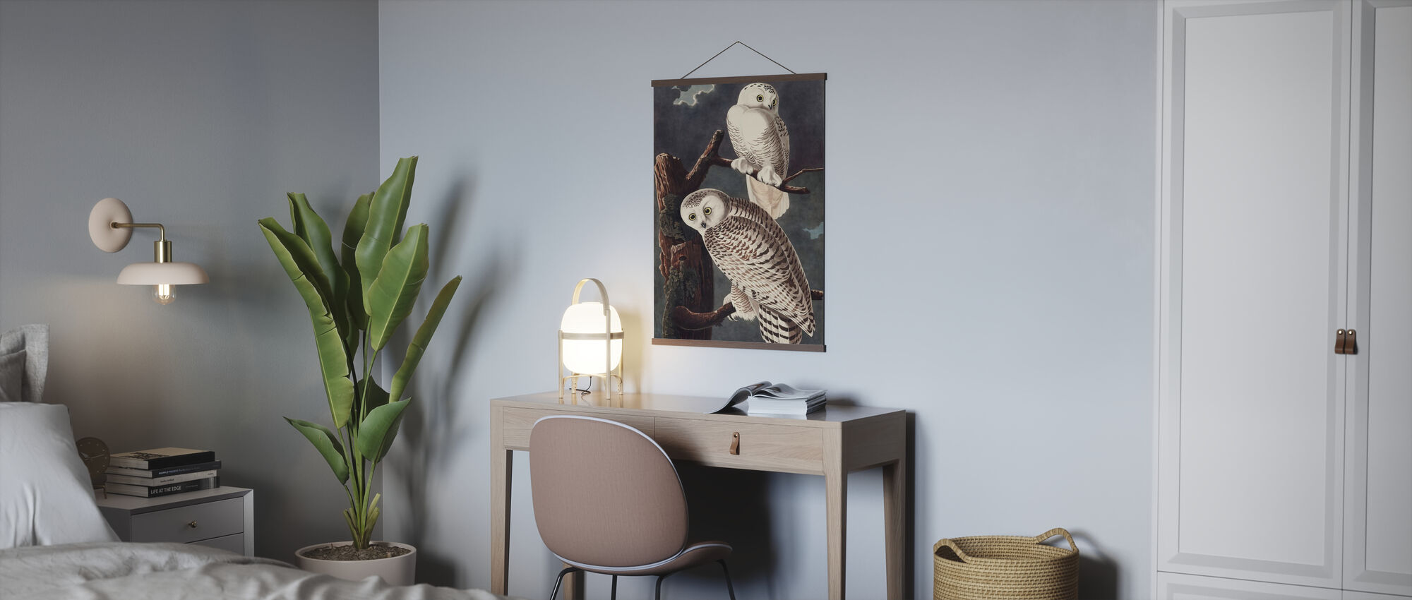 Snowy Owl - Poster - Office