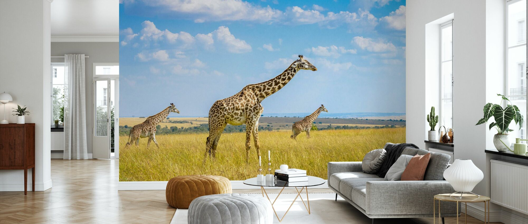 Trio Giraffe - Carta da parati - Salotto
