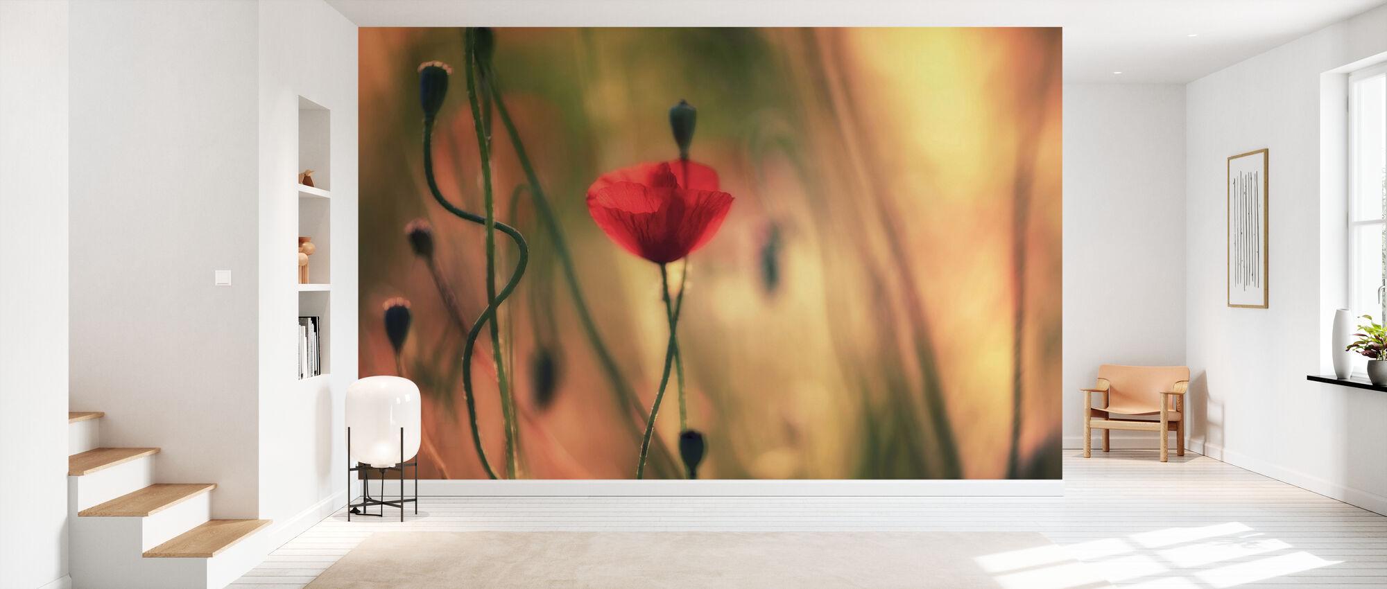 Red Poppy Flower - Wallpaper - Hallway