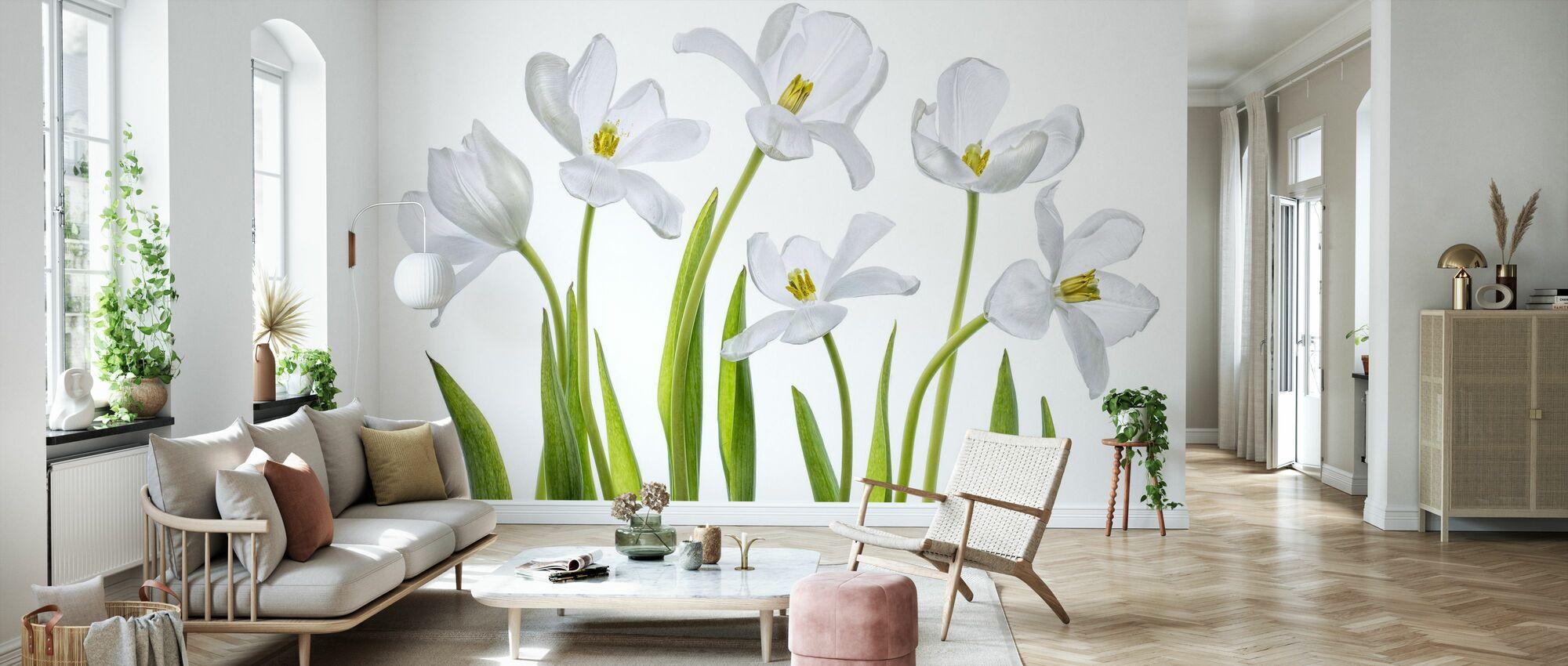 White Tulips - Wallpaper - Living Room