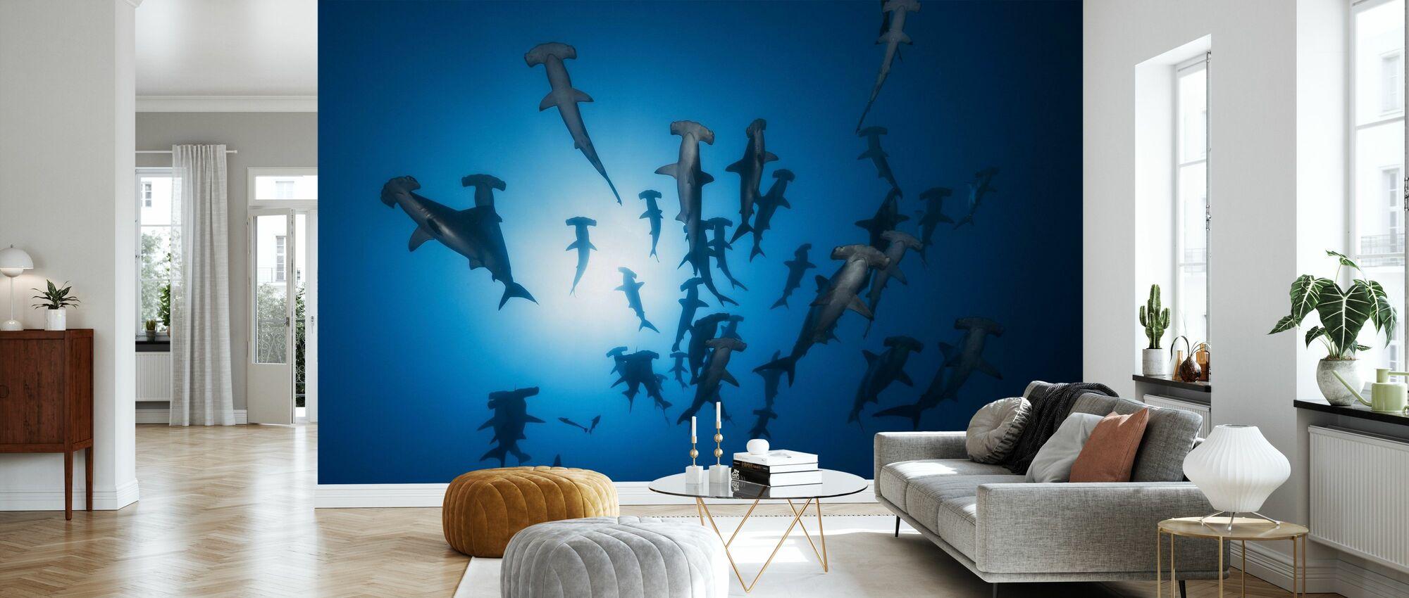 Hammerhead Shark - Wallpaper - Living Room