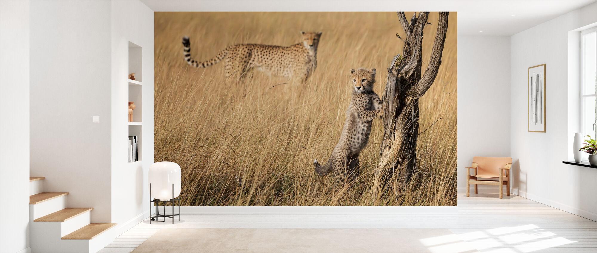 I've Got it Mum - Wallpaper - Hallway