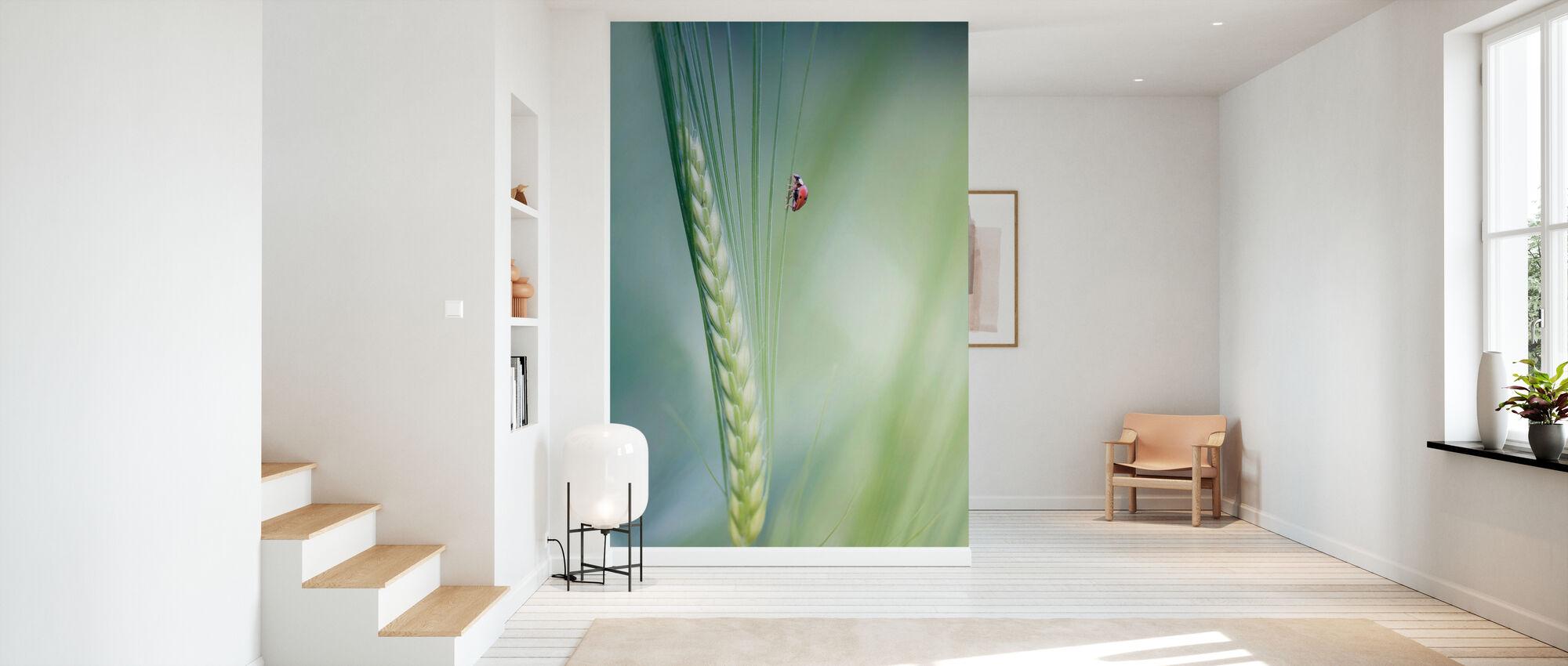 Beetle - Wallpaper - Hallway
